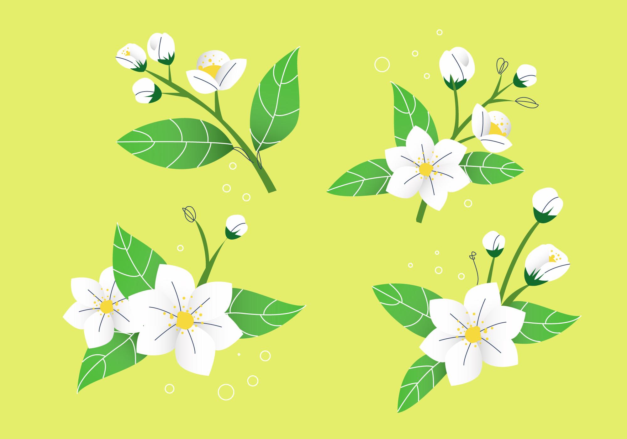 2000x1400 Petals Free Vector Art