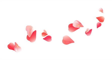 445x240 Pink Red Flying Petals Isolated On White. Sakura Roses Petals