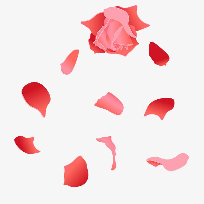 650x651 Rat Painted Rose Petal Vector, Rose Petals, Floating Petals, Petal
