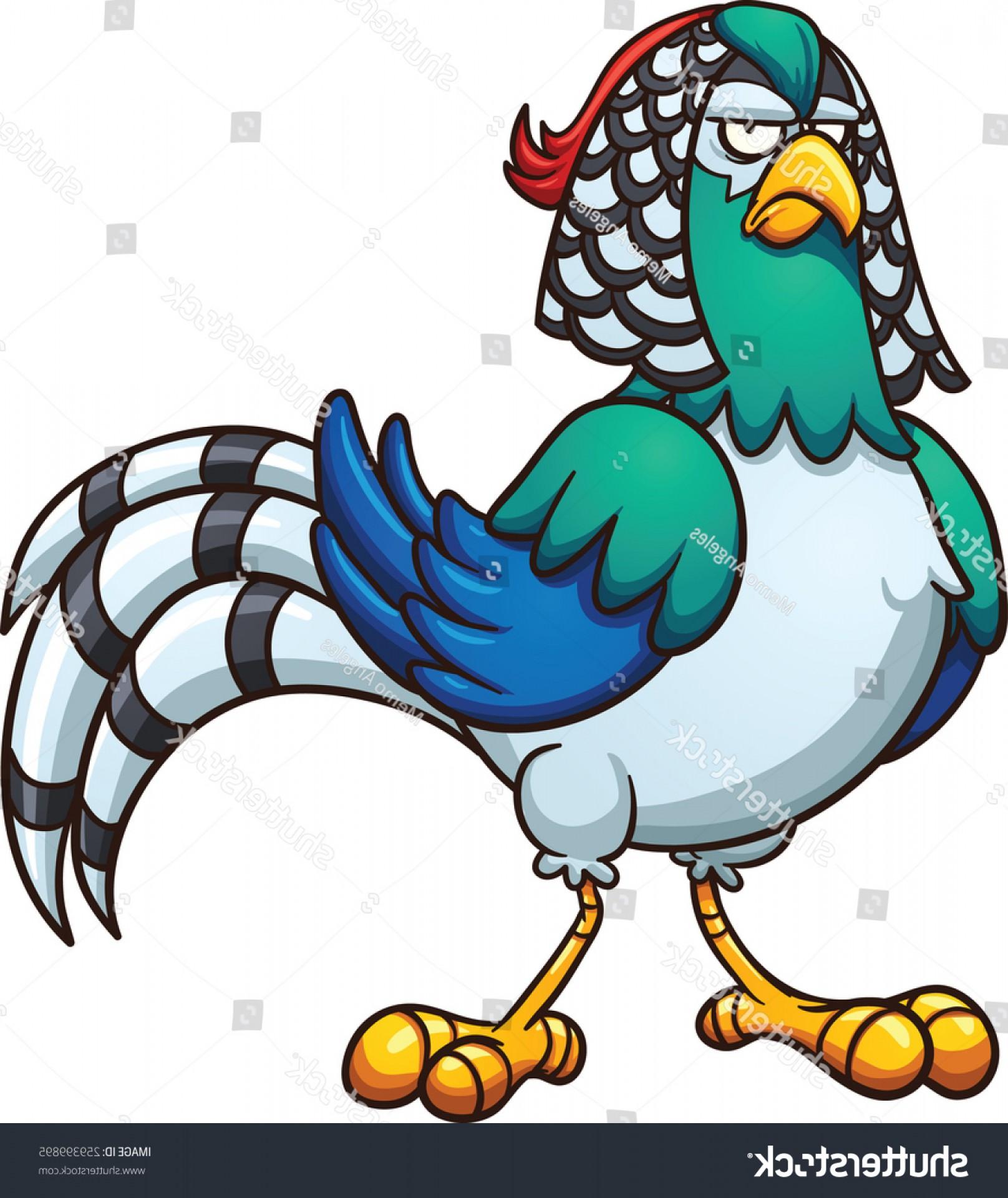 Pheasant Vector
