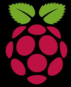 245x300 Raspberry Pi Logo Vector (.svg) Free Download
