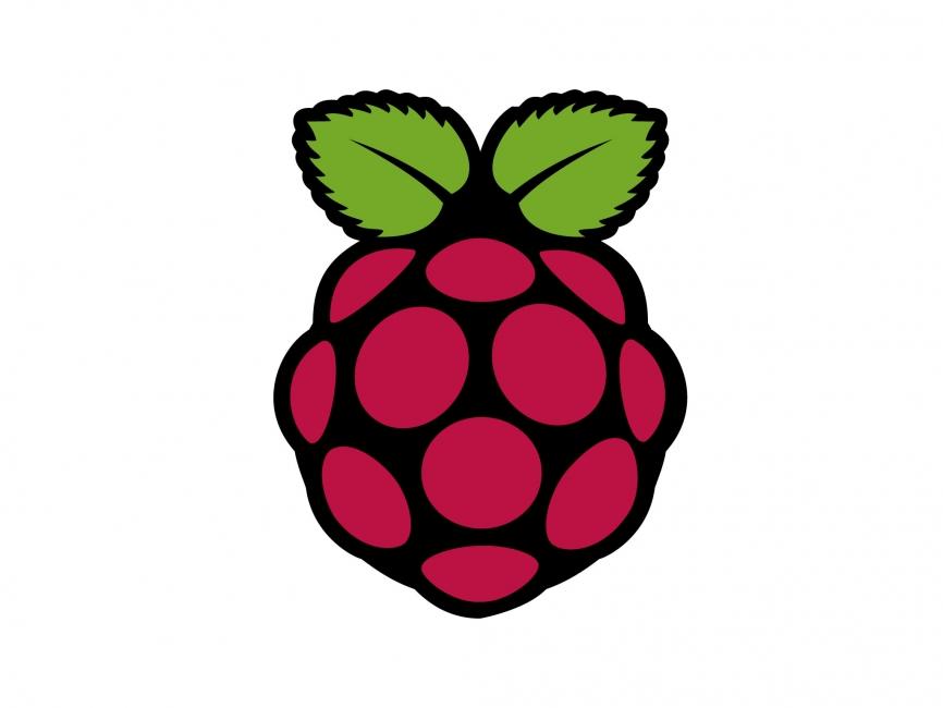 866x650 Raspberry Pi Vector Logo