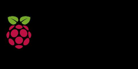 480x240 Raspberry Pi Vector Logos