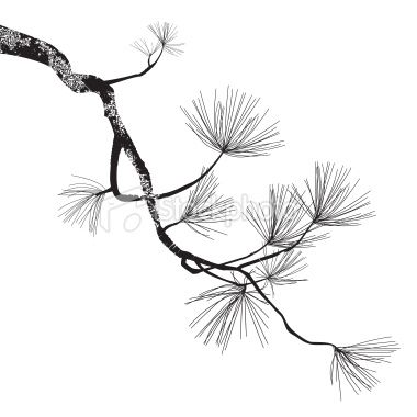 380x380 Illustration Of The Pine Branch Can Be Easy Change To Another