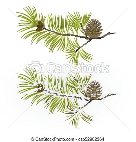 450x470 Pine Tree Branch And Pine Cone Autumnal And Winter Snowy Vector