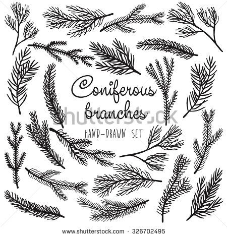 450x470 Vector Pine Tree Branches Set Black Silhouettes Isolated On White