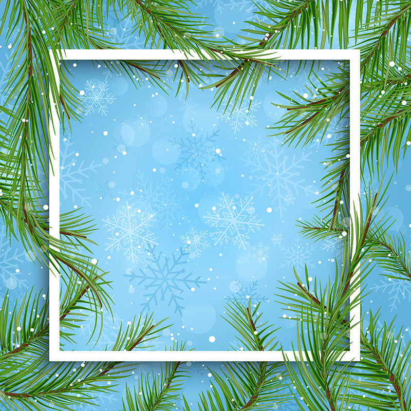800x800 Christmas Background With Fir Tree Branches 1309, Christmas