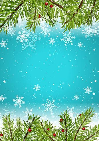 347x490 Christmas Background With Snowflakes And Pine Tree Branches