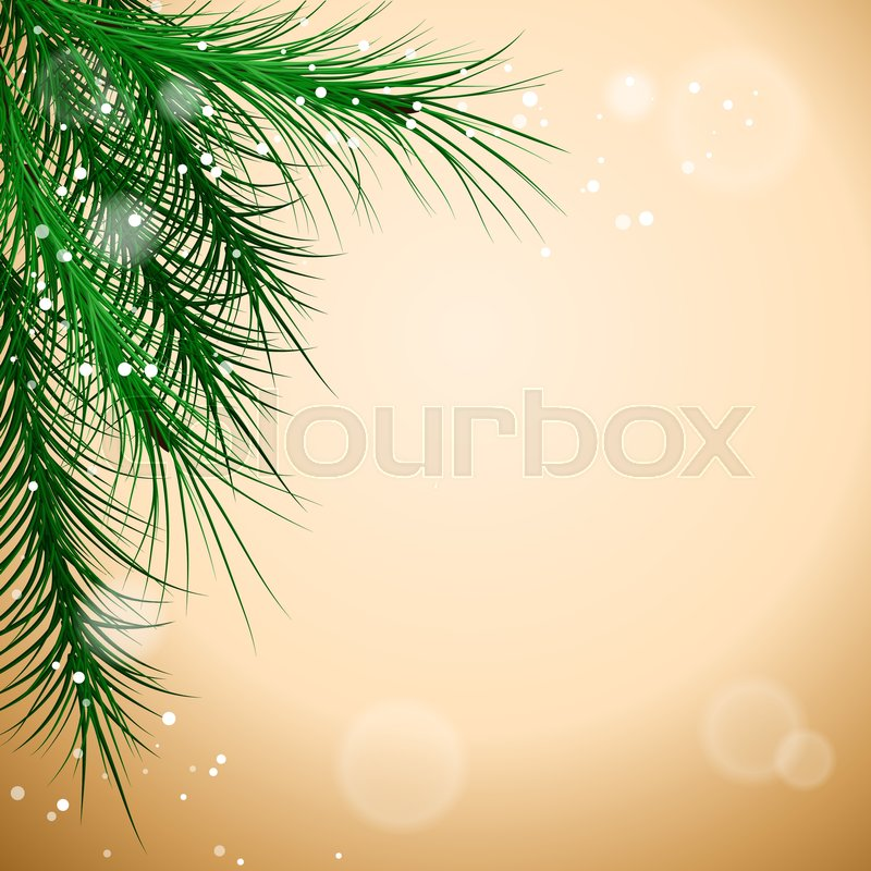 800x800 Christmas Green Framework With Pine Tree Branch, Vector