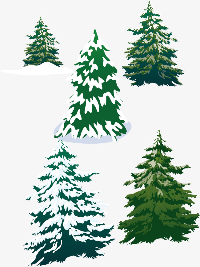 650x870 Vector Snowy Pine Trees, Pine, Snowy Day, Tree Png And Vector For