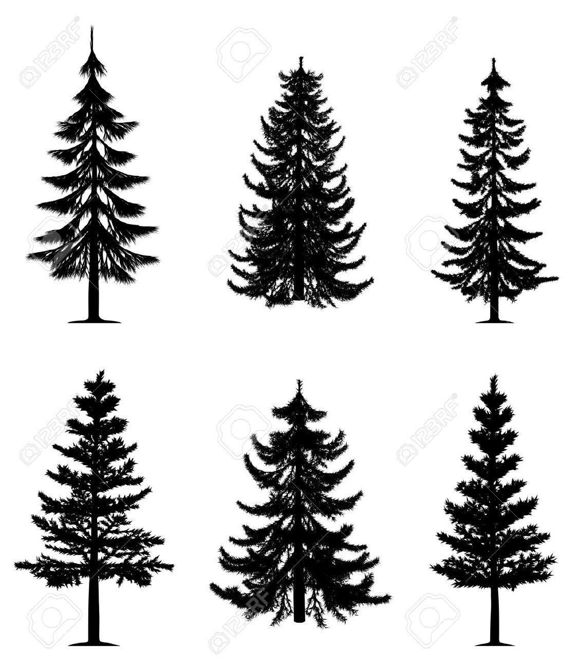 1129x1300 Pine Trees Collection I N K Pine Tree, Pine And