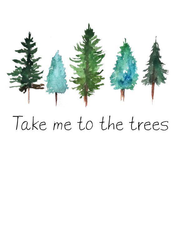 570x738 Take Me To The Trees Watercolor Pine Trees Art Print Pine Tree