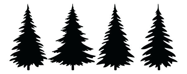 602x240 Pine Tree Vector Bsg Pine Tree Silhouette Vector Free Download