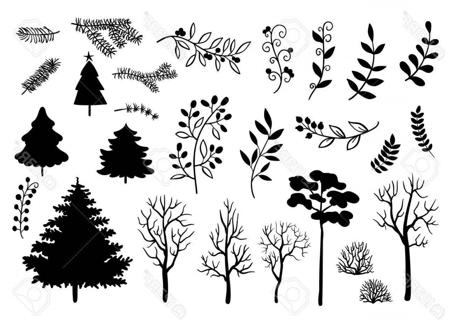 1560x1113 Photostock Vector Hand Drawn Black Silhouette Of Trees Branches