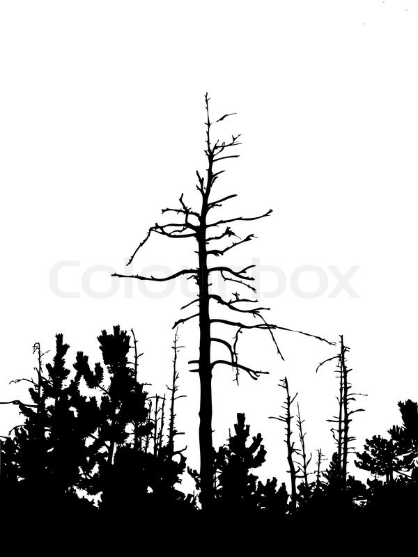 600x800 Silhouette Dry Tree Isolated On White Background Stock Vector