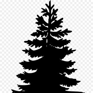 300x300 Trees In Flat Style Spruce Fir Tree Pine Vector Arenawp