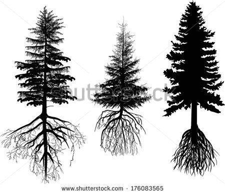 450x389 Tree Pine Vector