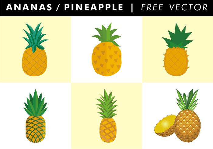 Pineapple Free Vector