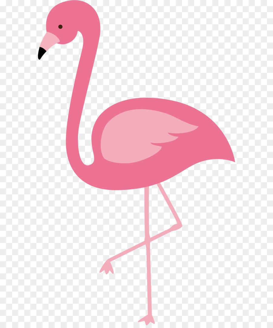900x1080 Flamingos Bird Euclidean Vector