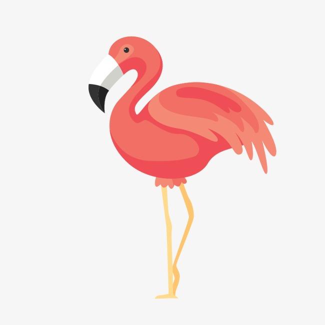 650x650 Pink Flamingos, Vector Birds, Vector Birds, Hand Painted Birds Png