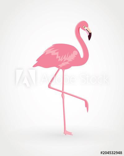400x500 Pink Flamingo . Vector Illustration .isolated On White Background