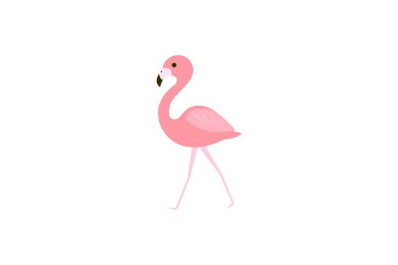 580x387 Pink Flamingo Vector Illustration Graphic By Sabavector
