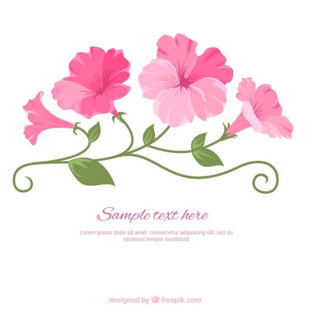 626x626 Illustrated Pink Flowers Vector Premium Download
