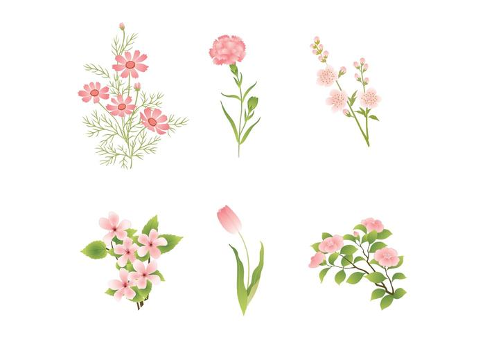 700x490 Various Pink Flower Vectors