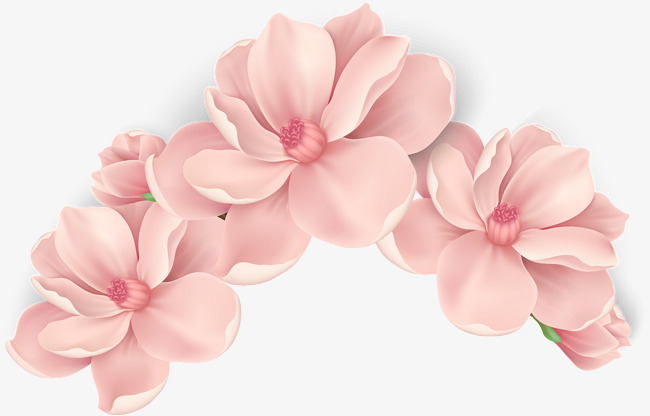 650x416 Vector Hand Painted Pink Flowers, Vector, Hand Painted, Blooming