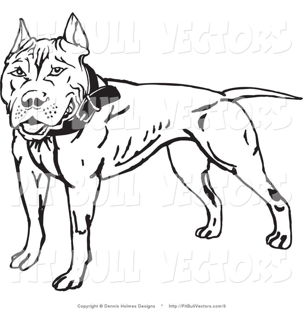 Pitbull Vector Graphics