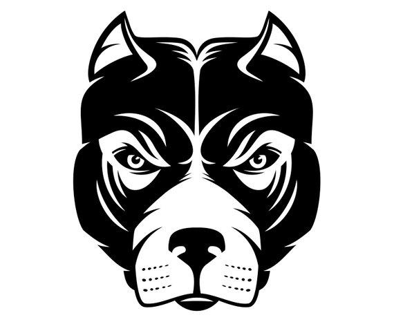 570x466 Pitbull Pit Bull Pit Bull Terrier Bull Terrier Etsy