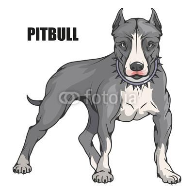 400x400 Pit Bull Terrier, American Pit Bull, Pet Logo, Dog Pitbull