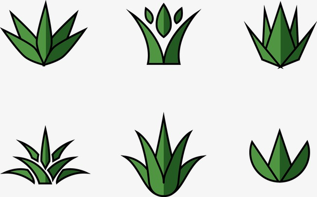 Plant Vector Free