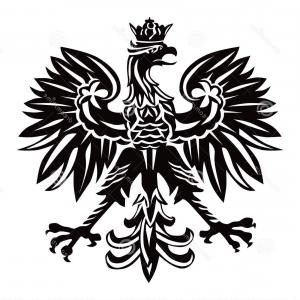 300x300 Polish Coat Of Arms Vector Arenawp