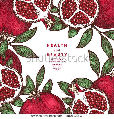 450x470 Pomegranate Fruit Vintage Design Template. Botanical Fruit