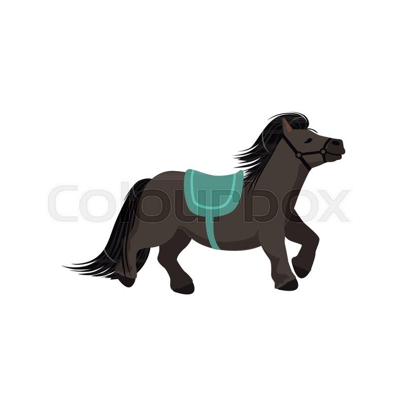 800x800 Cute Dark Grey Pony, Thoroughbred Horse Vector Illustration