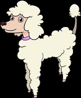 Poodle Vector