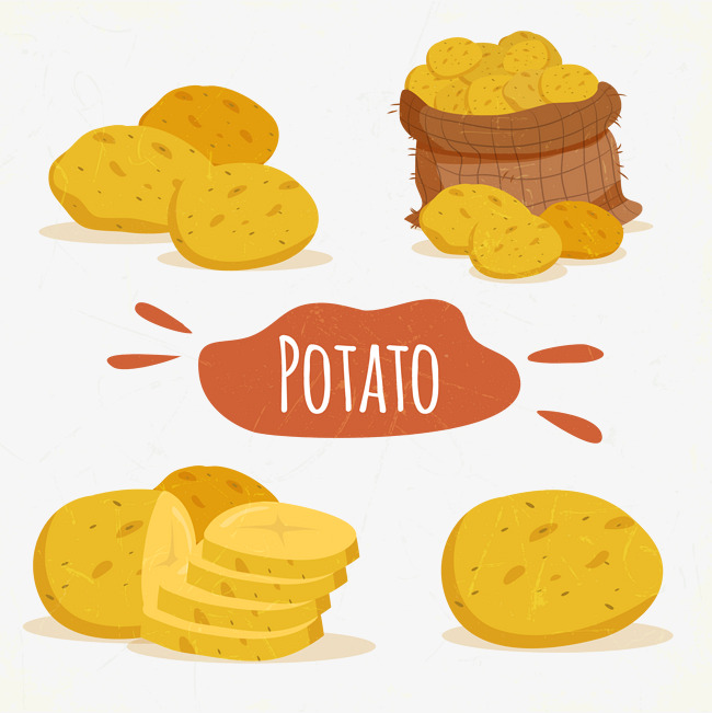 Potato Vector