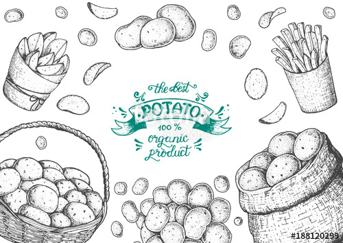 500x354 Potato Vector Illustration. Basket And Bag Of Potatoes. French