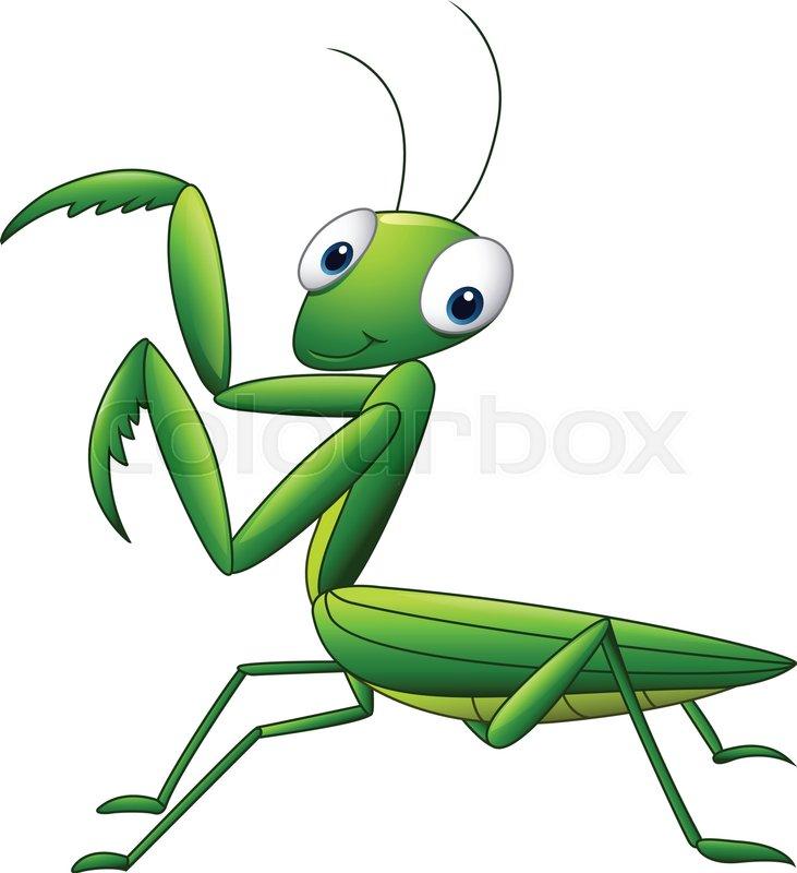 731x800 Illustration Of Praying Mantis Grasshopper Cartoon Stock Vector