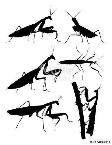 387x500 Praying Mantis Animal Silhouette. Good Use For Symbol, Logo, Web