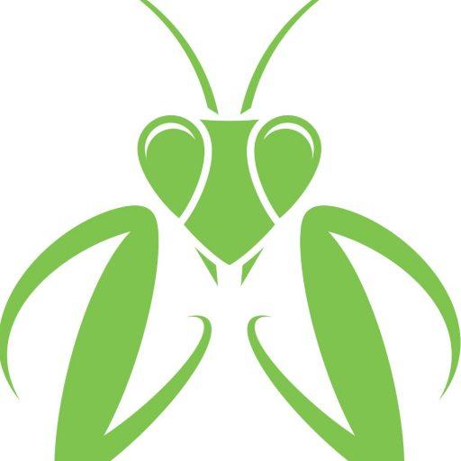 512x512 Cropped Praying Mantis Vector Id656678132 4.jpg Mantids Galore!