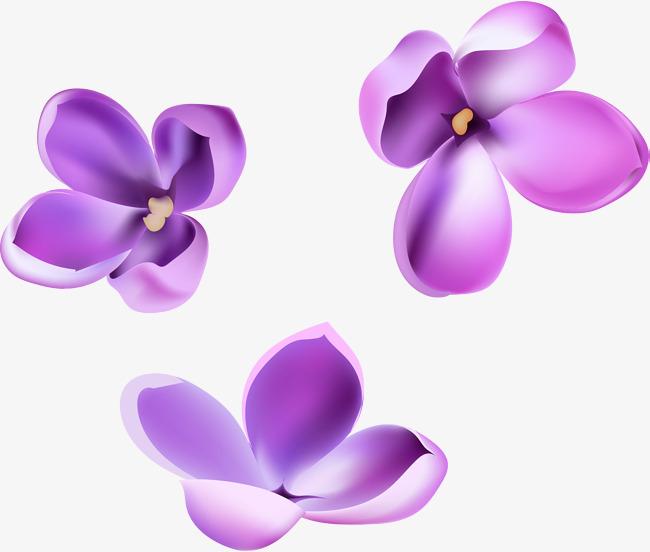 650x552 Vector Hand Painted Purple Flowers, Hand Vector, Vector, Hand