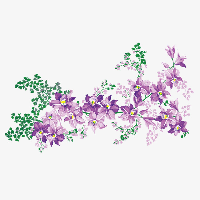 650x651 Vector Purple Flowers Branch, Vector, Purple, Flowers Png And