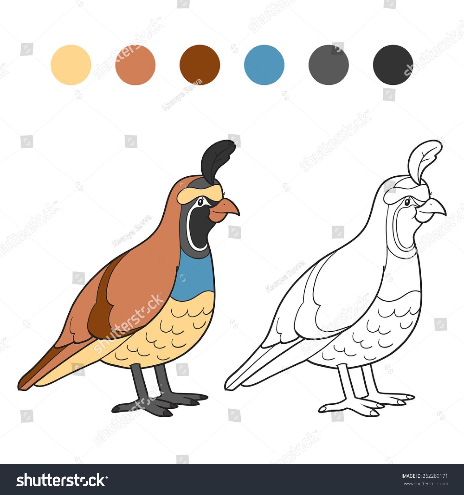 1500x1600 Coloring Book Quail Save Coloring Book Quail Bird Stock Vector