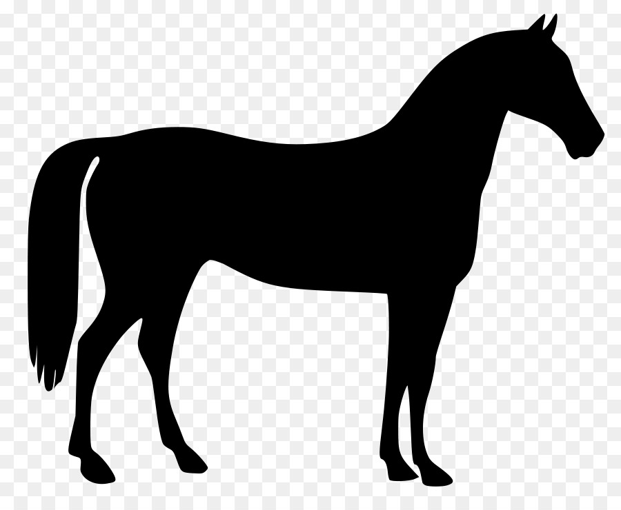 900x740 Download Horse Vector Clipart Thoroughbred American Quarter Horse