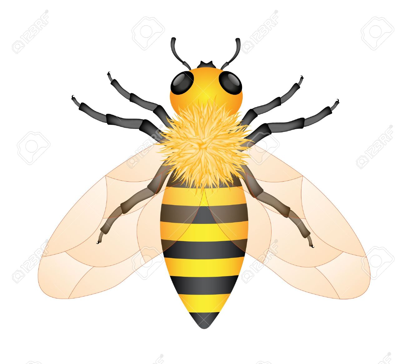 1300x1164 Free Queen Bee Icon 325785 Download Queen Bee Icon
