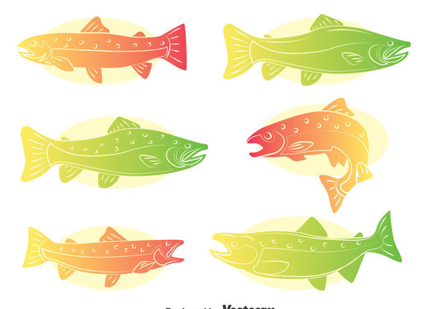 632x443 Rainbow Trout Vector Set Free Vector Download 401257 Cannypic