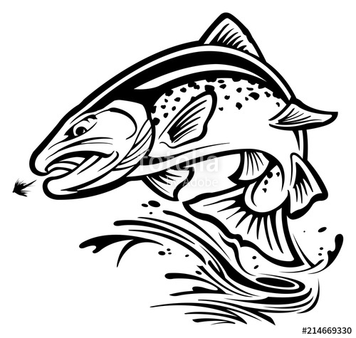 500x475 Rainbow Trout Stock Image And Royalty Free Vector Files On