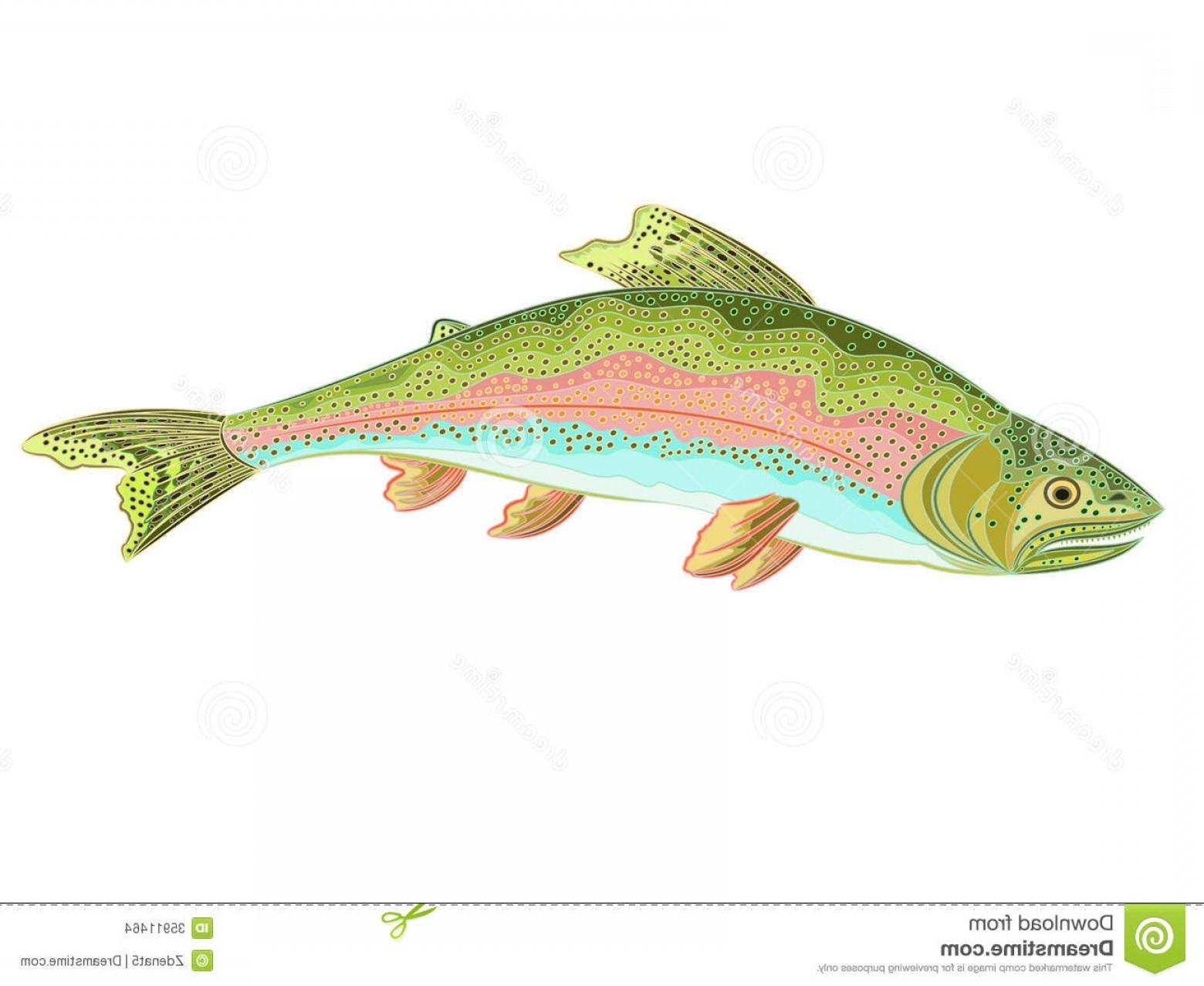 1560x1278 Stock Photo American Rainbow Trout Predator Catch Fish Th Image